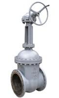 Задвижка фл. 30с541нж Ду500  Ру16 (газ)